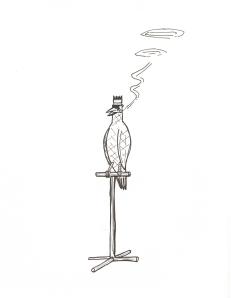 idealbird.jpg